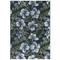 "Liora Manne Marina Floral Indoor/Outdoor Rug Navy 23""X7'6"""