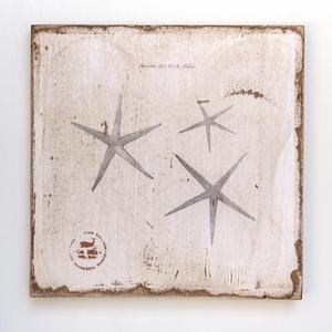 Sea Stars Lithograph Art