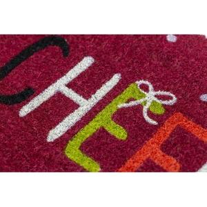 Cheer Coir Doormat with Backing